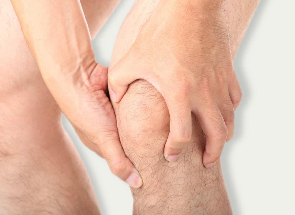 cruciate_ligament